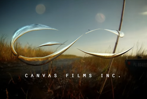 Behind the Scenes – Canvas Films: Miami